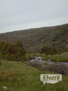 El rio y sus prados, sent by: Administrador