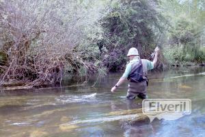 Pescando, sent by: kazan