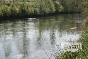 Tabla, sent by: creek