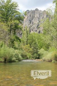 Buena plancha, sent by: creek