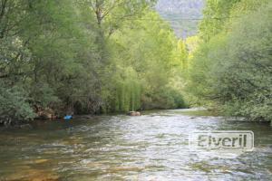 Fisonomia de la parte inferior l ct, envoyé par: creek