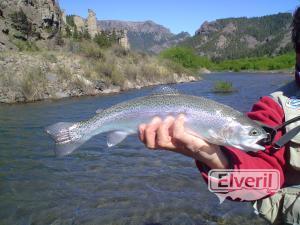 Pesca en el Traful, sent by: Daniel (Not registered)