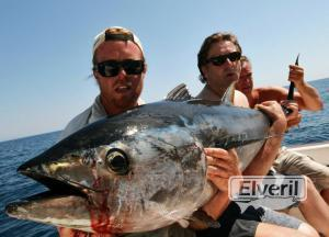 atun rojo a brumeo, sent by: delta game fishing Riumar (Not registered)