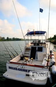 barco pesca deportiva delta del ebro, sent by: delta game fishing Riumar (Not registered)