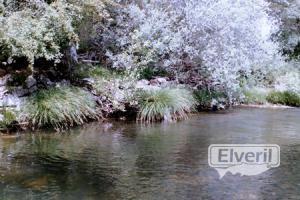 Rio Pedroso, sent by: ElVeril (Not registered)