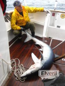 Ya en el barco, sent by: Administrador