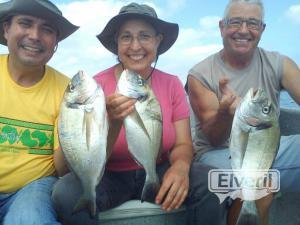 Untitled image, sent by: doradas en el delta del ebro (Not registered)