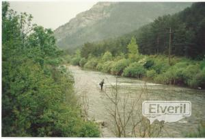 Rio Esca (Navarra), sent by: iml (Not registered)