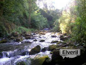 Albistur Erreka (Afluente rio Oria) Gipuzkoa, envoyé par: Imagenes (Non enregistré)