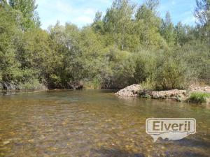 Río Arlanzon en San Millan, sent by: Burgales de Madrid (Not registered)
