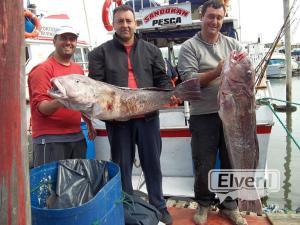ABC SANDOKAN GUIA DE PESCA, sent by: SANDOKAN (Not registered)