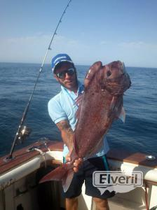 Capiton. Verano 2014, enviado por: pescaenbarco.com (No registrado)