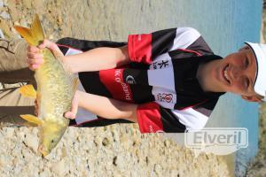 first Spanish carp, sent by: Euan (Not registered)