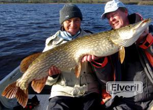 Ireland Pike Fishing on Lough Derg., sent by: Herman Molenaar (Not registered)