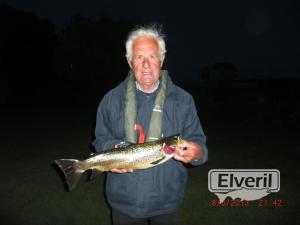 Evening may fly fishing , sent by: Richard Collins (Not registered)
