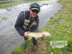 Another 6lb Motu brown, sent by: Simon Hustler (Not registered)