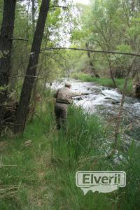 Pescando Cristinas, sent by: Administrador