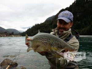 Salmon salar, enviado por: Johansen