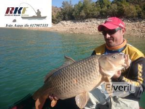carpa a drop shot, envoyé par: radicalkayakfishing
