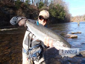 Steelhead Salmon River, sent by: Trico