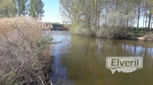 Ribera del Duero, enviado por: enedino
