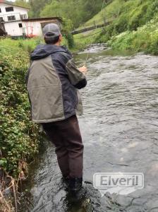 pesca, sent by: Ortodoxa (Not registered)