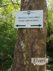 Regata de albistur, sent by: Zona libre (Not registered)