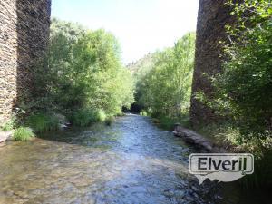 Entrada en el río, sent by: David (Not registered)