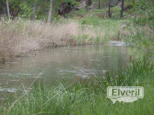 Mas fotos del rio, sent by: El Andarrios