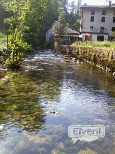 Albistur Erreka (Afluente rio Oria) Gipuzkoa, sent by: Imagenes (Not registered)