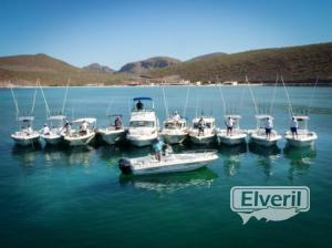Our Fleet of Boats, sent by: Leonard Phillips (Not registered)