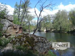 Los Llanos de Tormes, sent by: enedino