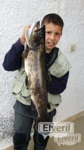una gran trucha, sent by: adrian gutierrez manjon (Not registered)