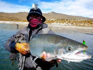 Arco iris gigante pescada en lago patagonico, sent by: Johansen