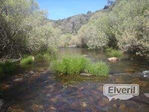 El río aquá es pequeño y con poca agua, sent by: Administrador